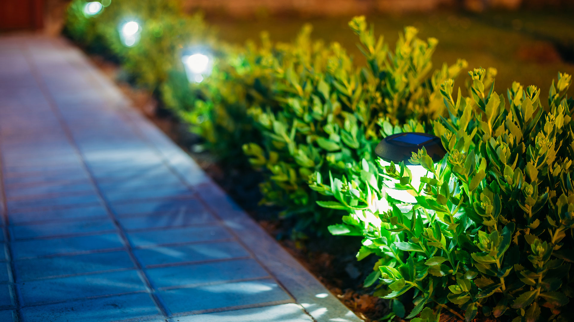 Use outdoor lighting to illuminate walkways and spotlight landscape plants.