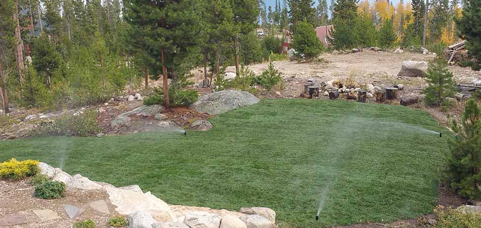 The portion of the property shown in this image represents just one zone of the irrigation system we installed for this %%targtarea1%% customer.